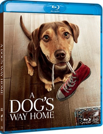 A Dogs Way Home Blu-Ray