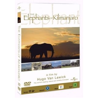 HVL Elephants of Kilimanja