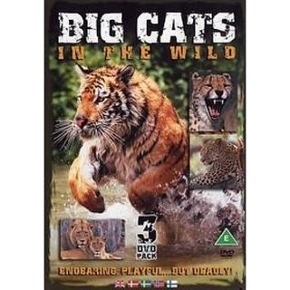 Big Cats In The Wild (3 DVD)